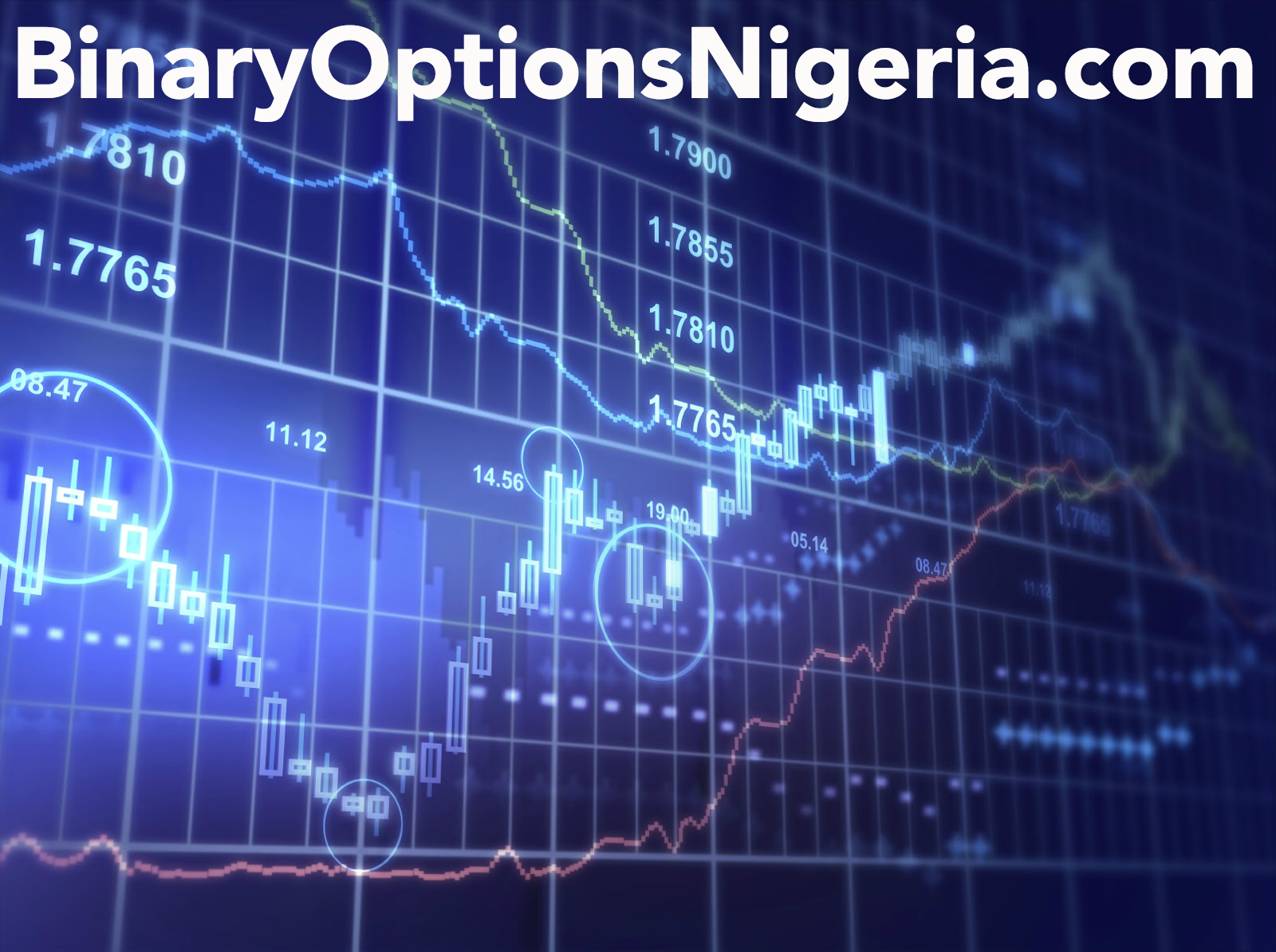 Binary option traders in nigeria